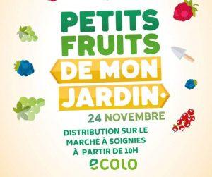 Petits fruits… grands effets : Ecolo sensibilise la population à une production locale et de qualité
